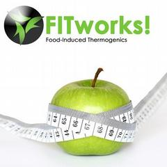 FITworks Online Program.ashx_medium